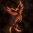 Biotech Phoenix