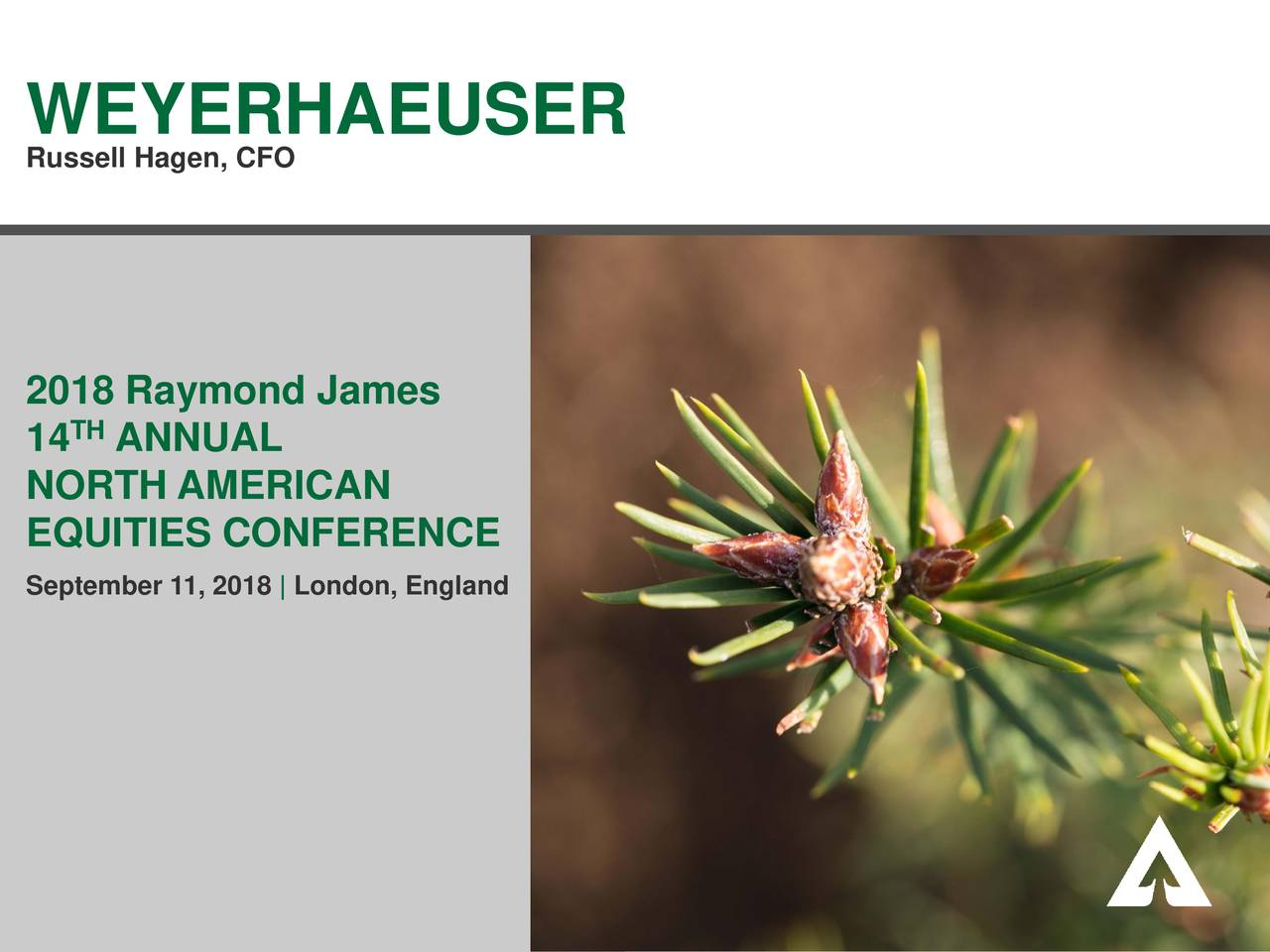 Weyerhaeuser (WY) Presents At Raymond James 14th Annual